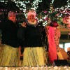 Fantasy of Lights Parade offers grand opportunity